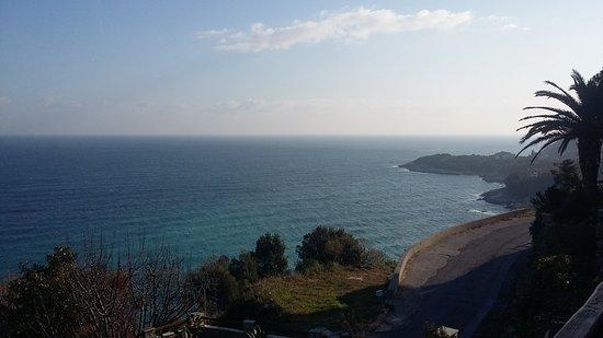 Mouresi, Grecia: 20161224_102433_large.jpg