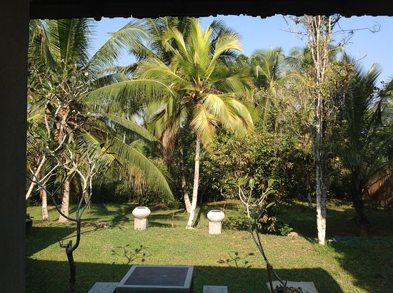 Comilla Bungalow: View from our room