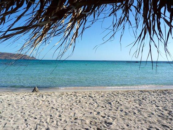 Ελαφονήσι, Ελλάδα: Plage d'Elafonissi