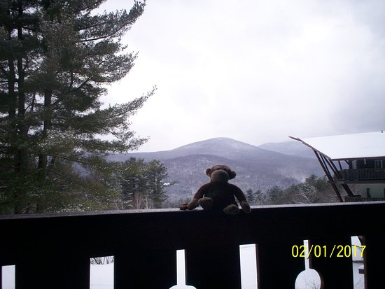 The Stowehof Photo