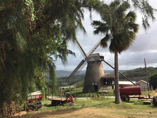 Saint Andrew Parish, Barbados: Morgan Lewis windmill