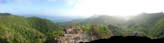 The Peak Forestry Reserve: DSC_1404_large.jpg
