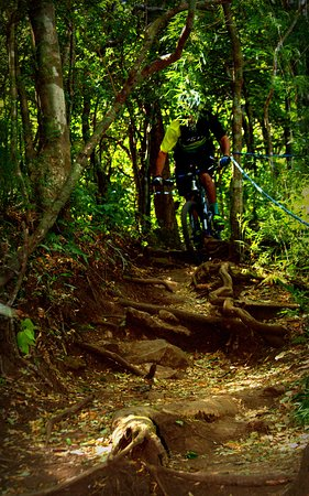 Hacienda Guachipelin: MTB single track