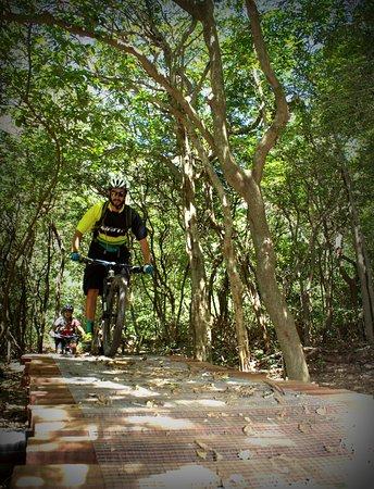 Hacienda Guachipelin: MTB single tracks in the dry tropical forest