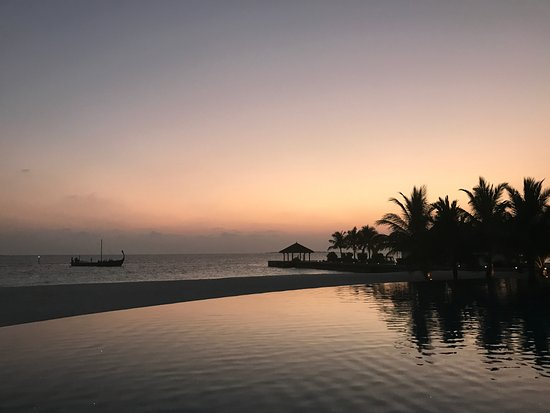 sunset infinity pool bild von velassaru maldives velassaru island tripadvisor. Black Bedroom Furniture Sets. Home Design Ideas