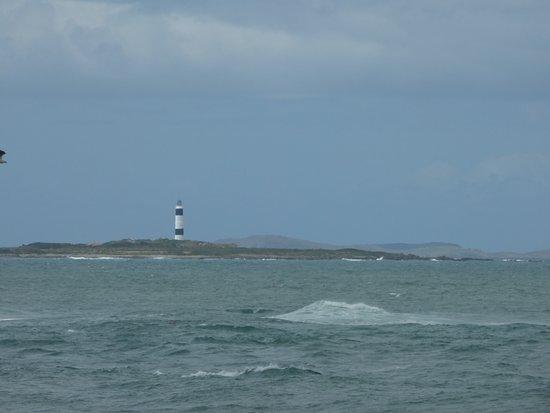 Bluff, Nueva Zelanda: Looking across the Foveaux Strait