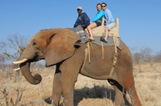 The Best Tour Company in South Africa - Review of LBK Tours and