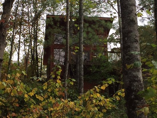 Robbinsville, Karolina Północna: #3 Poplar