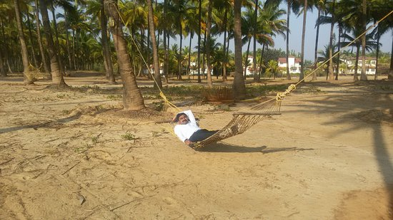 Krishnali Beach Resort: 20170202_162807_large.jpg