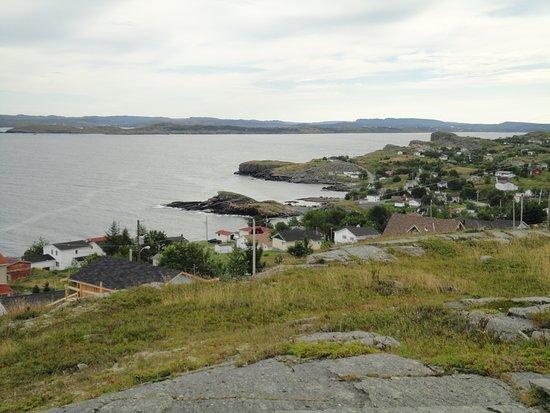 Upper Island Cove Foto