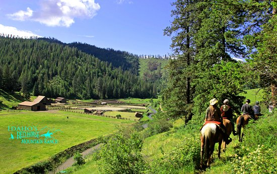 Harrison, ID: Horseback Riding