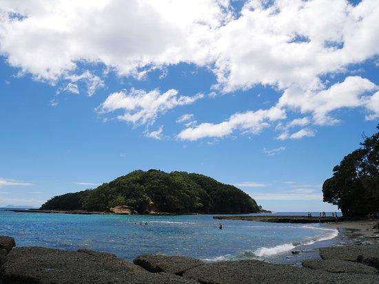 Leigh, Nueva Zelanda: Goat Island Marine Reserve