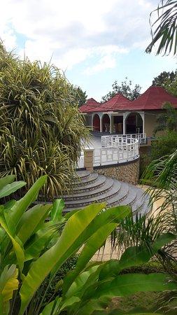 Coral Seas Garden Photo