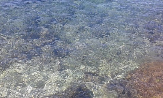 Camping Bijela Uvala: mare limpido di sassi