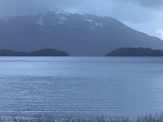 Sitka's Eagle Bay Inn: On the left side In the distance, there is a whale spouting. Lots of them on our visit!