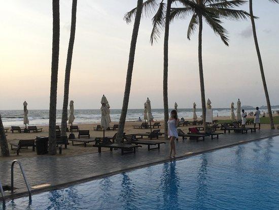 Imagen de The Surf Hotel