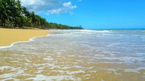 Playa de las Canas