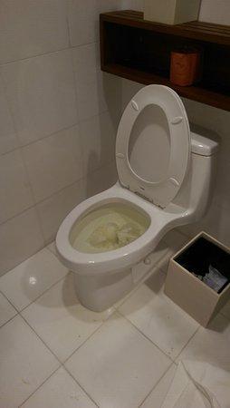 Hotel Valencia - Santana Row: Toilet day #2-Still not fixed!!!