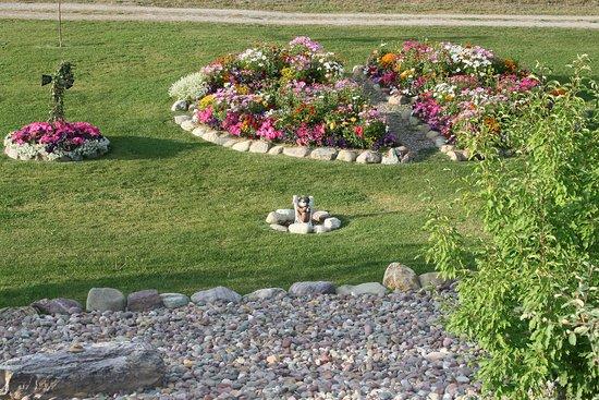 Coram, Montana: View of flower gardens