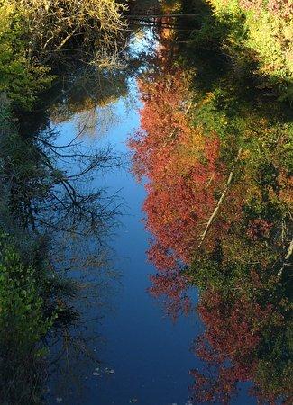 Fromista, Spain: Reflejos en las aguas del Canal