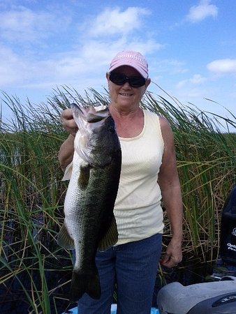 stick marsh in palm bay, florida - picture of bass online fishing, Fishing Rod