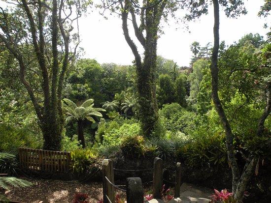 Epsom, Nueva Zelanda: Eden Memorial Gardens