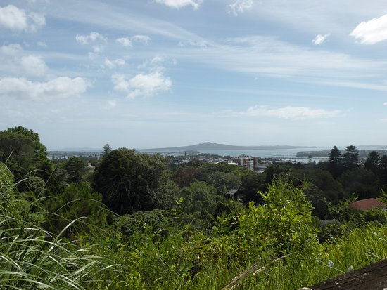 Epsom, Selandia Baru: From the lookout