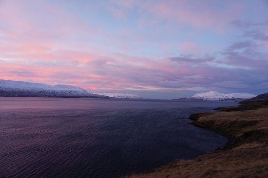 Polar Hestar : The most beautiful sunset