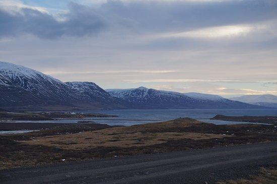Polar Hestar : The fjord