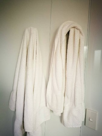 Kingsgate Hotel Autolodge Paihia: Nowhere to hang wet towels but on hooks,meant they were damp for the next day