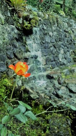 Yumbo Spa and Resort Image