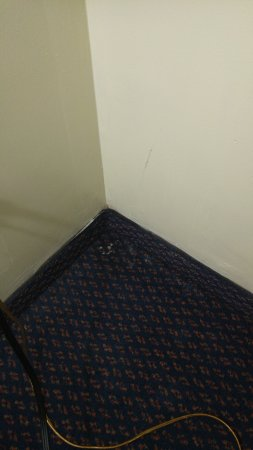 Redford Motel & R.V. Campground: Spider webs behind the couch
