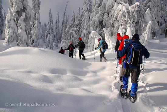 Bayfield, Κολοράντο: Snowshoe tours near Durango