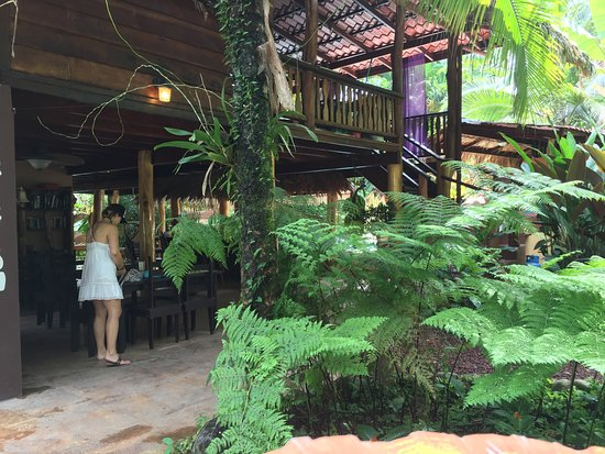 Cocles, Costa Rica: Indoor/outdoor reception area, which includes a tropical bar overlooking the pool