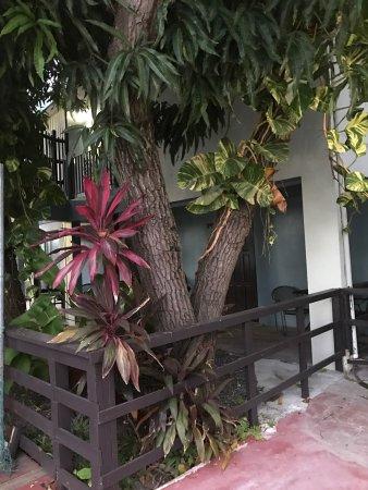 Rincon Inn: photo1.jpg