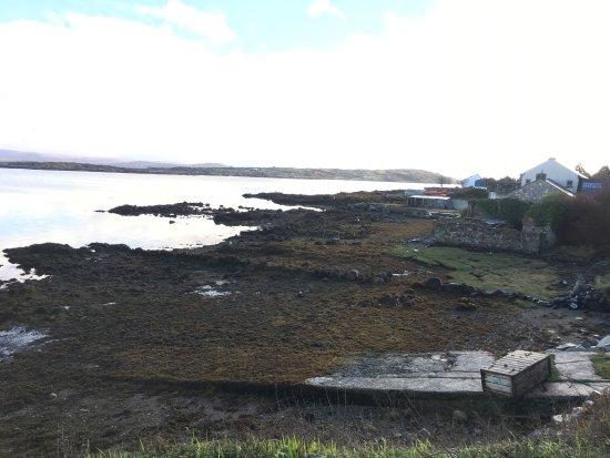 Cratloe, Irlanda: photo2.jpg