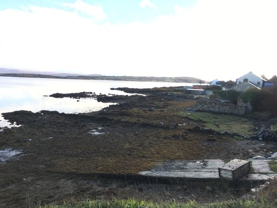 Cratloe, Ireland: photo2.jpg