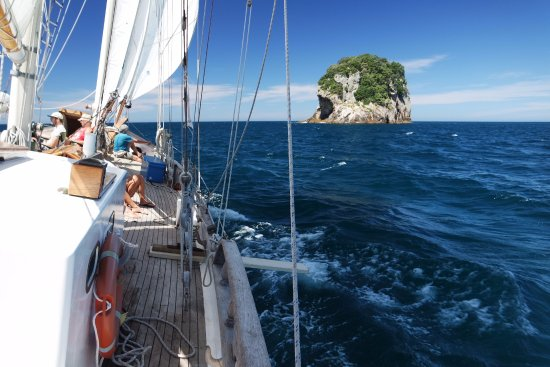 Whitianga, Nieuw-Zeeland: Sailing around the islands.