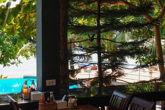 Montalay Beach Resort : photo3.jpg