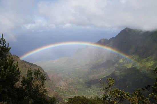 Noah's Ark Kauai Tours