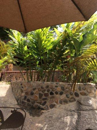 Los Veranos Canopy Tour: photo3.jpg