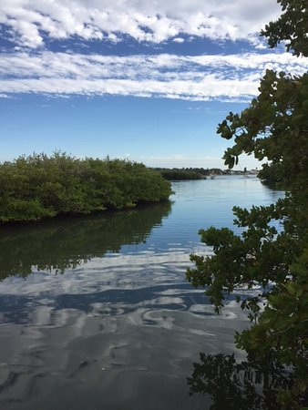 View from Osgood Beach at Clam Bayou Nature Park, off Miriam St. S