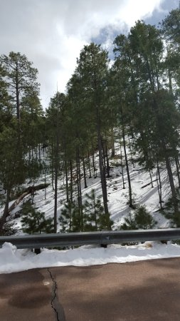 Snow At Higher Elevation Picture Of Mt Lemmon Scenic Byway - Higher elevation