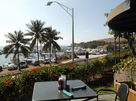Seascape Ma'alaea Restaurant: This photo is the Harbor to the right and Open Ocean is forwar and to the left. Great 180* view!