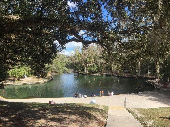 Wekiwa Springs State Park: photo9.jpg