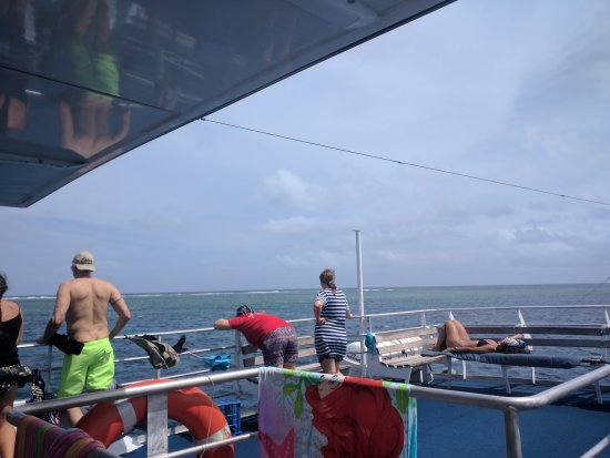Pro Dive Cairns Day Trips : DDD