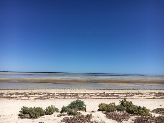 Discovery Parks - Whyalla Foreshore: photo2.jpg