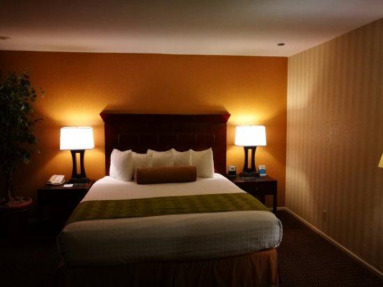 BEST WESTERN PLUS Carpinteria Inn : Room
