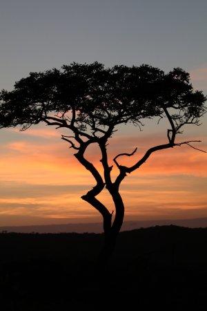 KwaZulu-Natal, Afrika Selatan: photo1.jpg