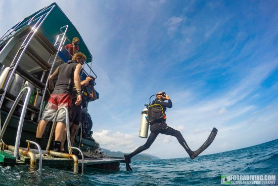 Forra Diving - Day Trips: A giant GIANT stride off the back of our daily diving boat